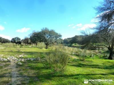 Cárcavas del Río Perales - Sierra Oeste de Madrid; rutas por madrid; viaje noviembre